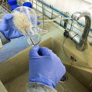 Hygiène et nettoyage